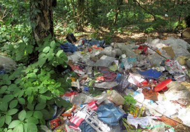 Wilder Müll verursacht der Allgemeinheit hohe Entsorgungskosten